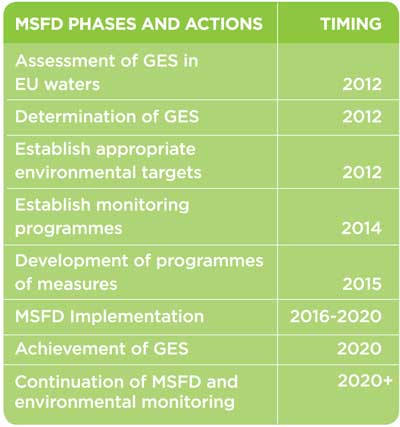 stages msfd-phases-and-actions-graphic